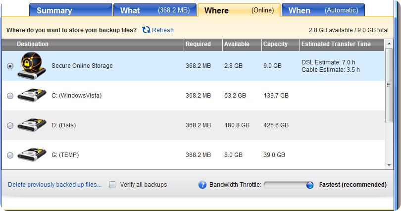Norton 360 v3.0 Online storage