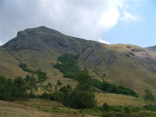 view_from_rajamalai.jpg