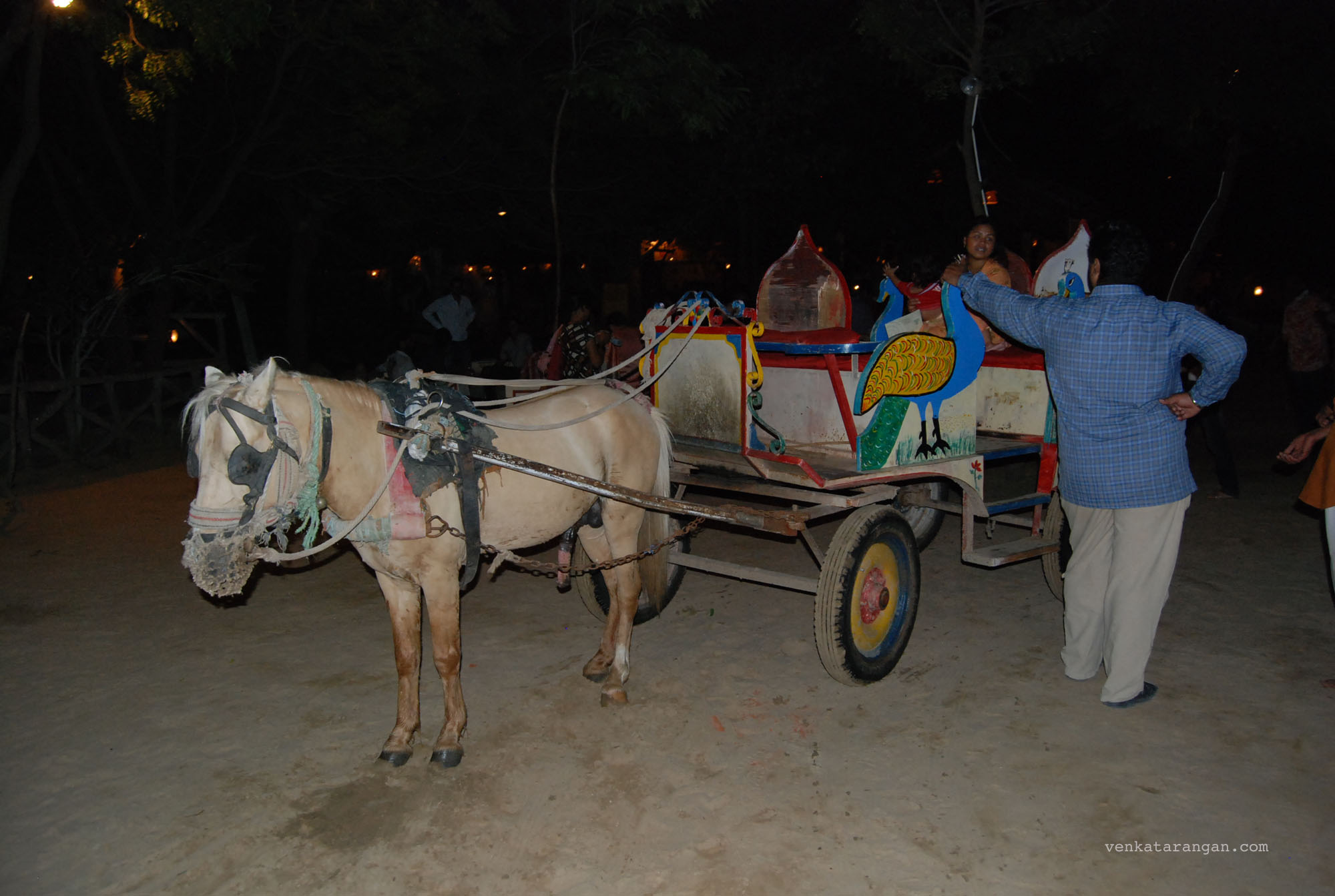 Horse Carriage in Chokhi Dhani