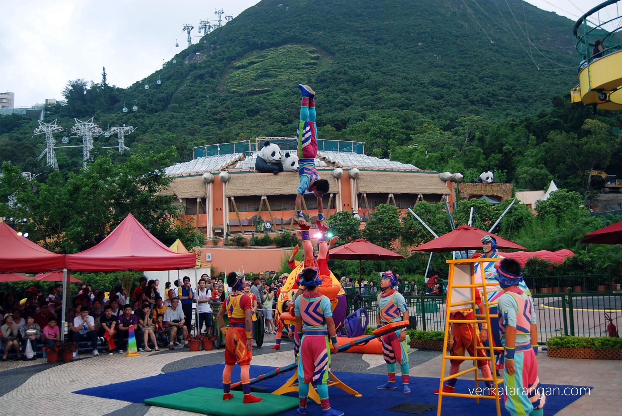 Live show - Ocean Park, Hongkong