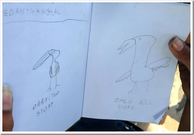 Sketches made by son during the tour to Vedanthangal Bird Sanctuary
