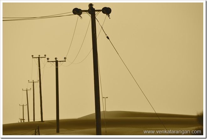 Power poles in area near Dubai Desert Safari