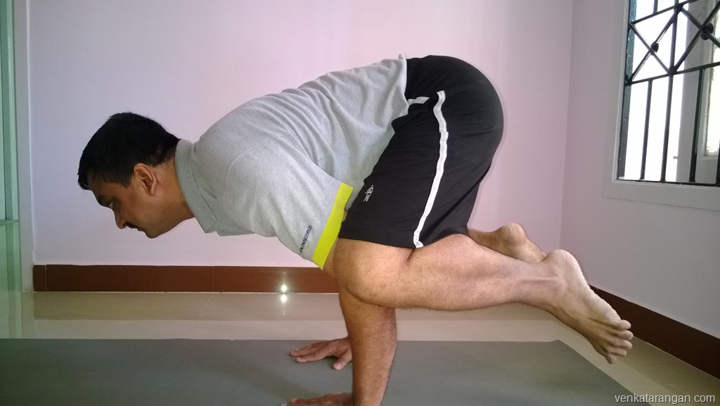 The Crow Pose - Kakasana