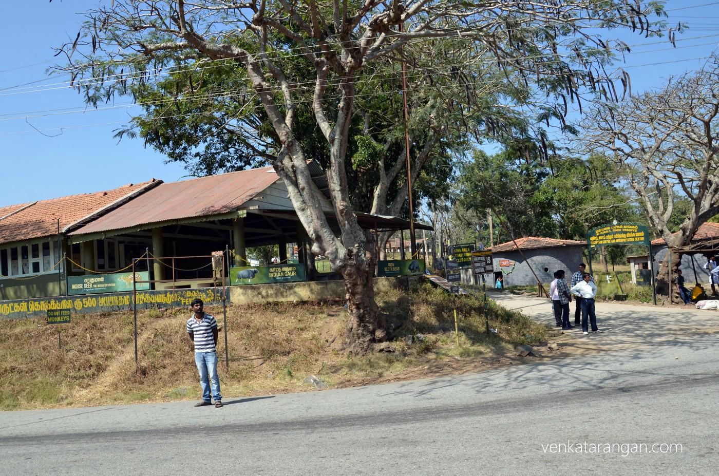Mudumalai Tiger Reserve - Tourist Centre