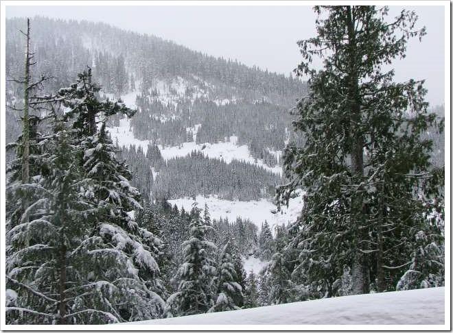 Snow on hillside - Leavenworth