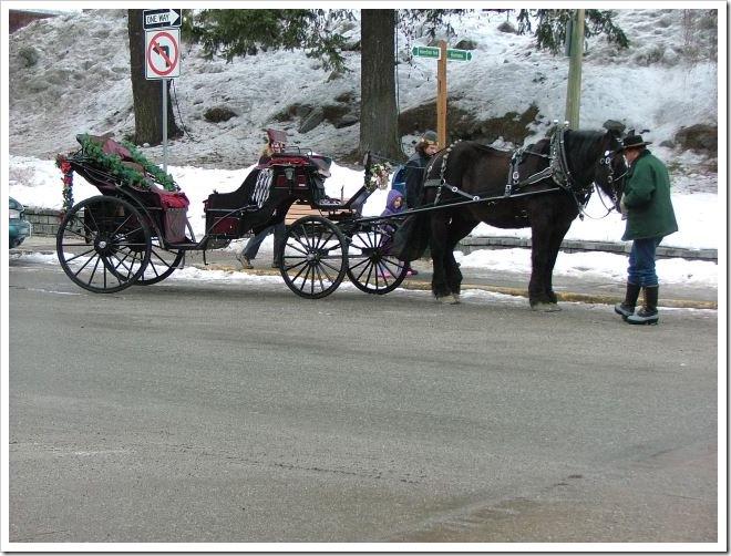 Horse cart - Leavenworth