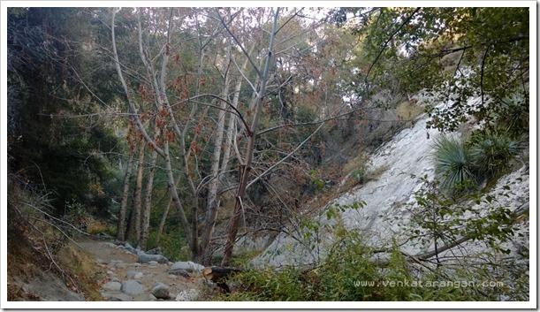 Switzer Falls Hiking 17Nov2013 (43)