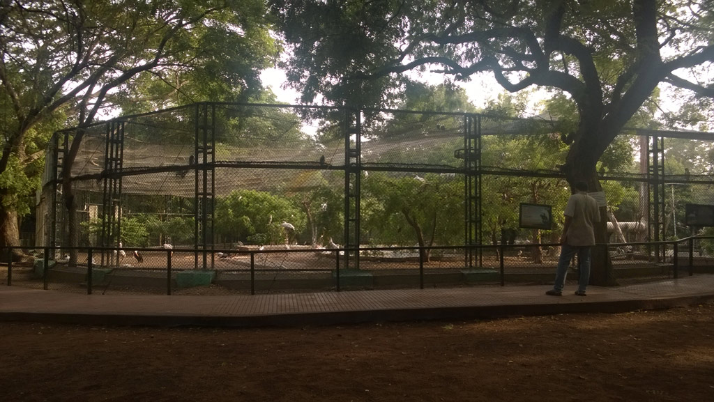 Guindy-National-Park-Aug2014-1