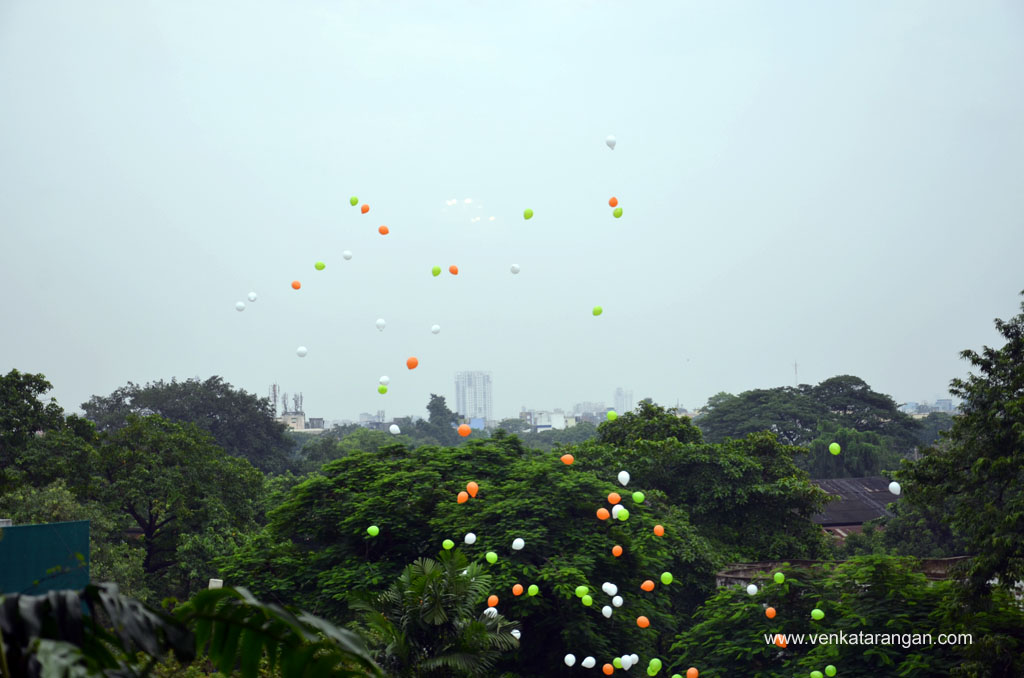 Tri-colour balloons celebrating Independence Day (15 August)