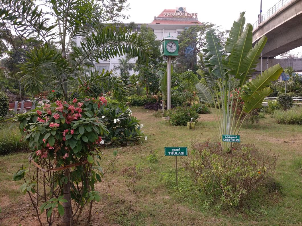 Ashok Nagar Park Venkatarangan S Blog
