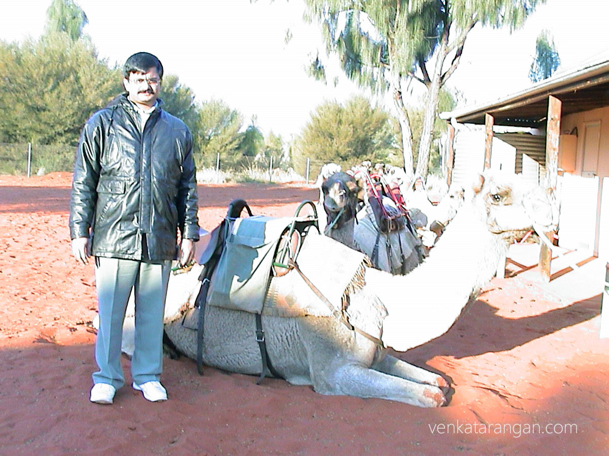 (June 2002) Camel Ride around Uluru