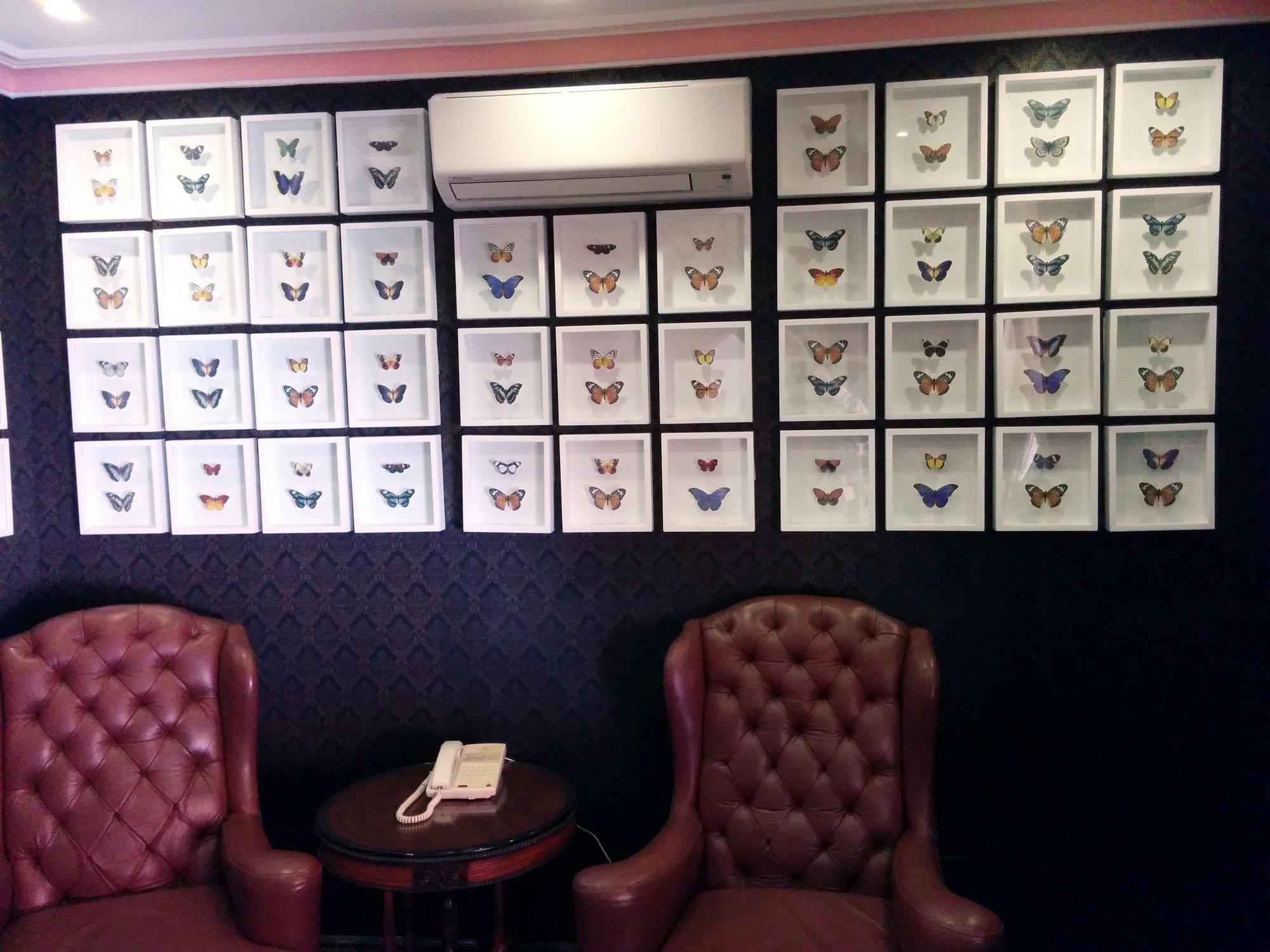 Mayfair Lagoon - Butterfly lounge