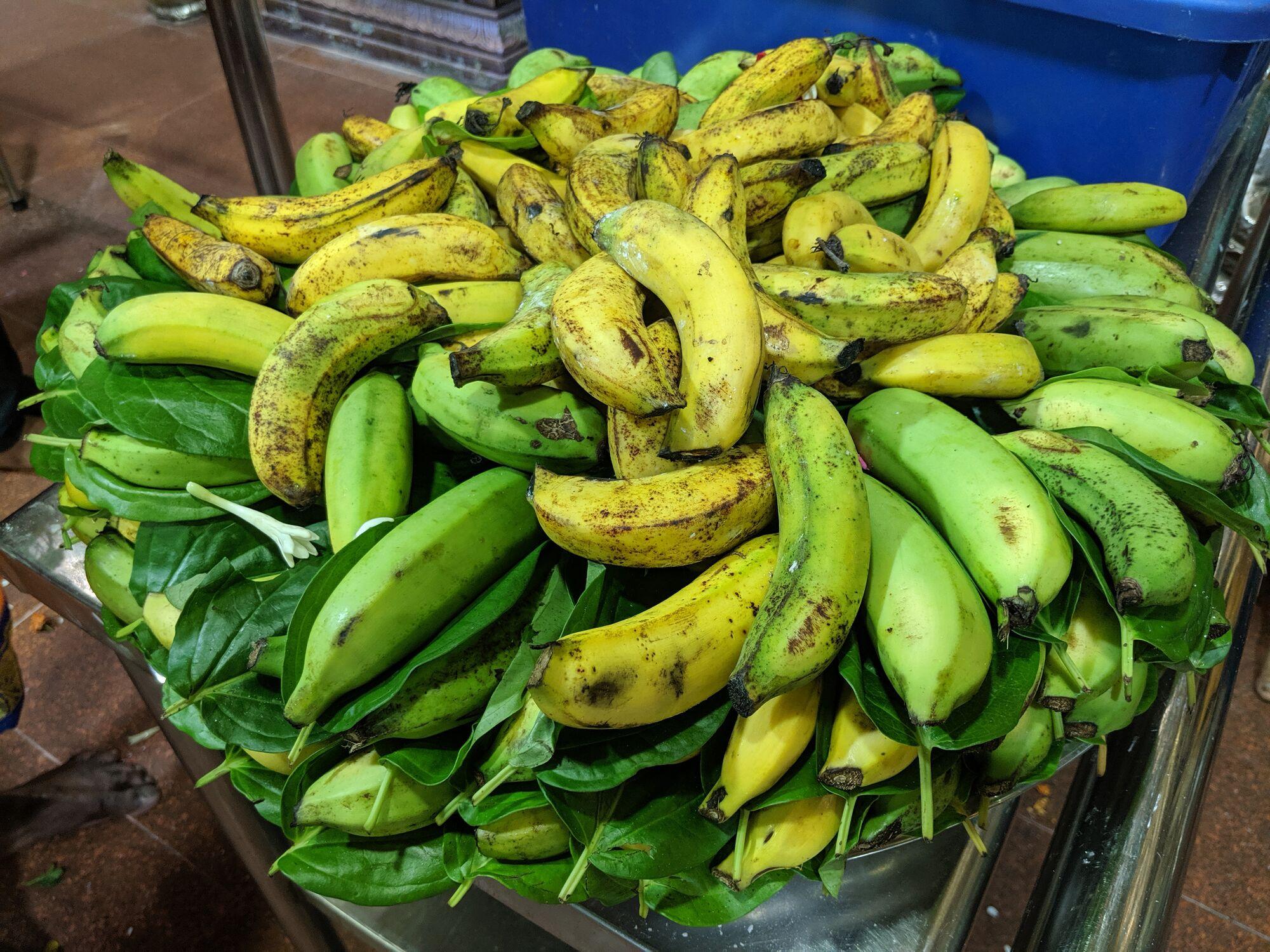 பழம், வெத்தலை - என்ன அழகான அடுக்கு!! #fruit_decoration #bettle_leaf #temple_offerings