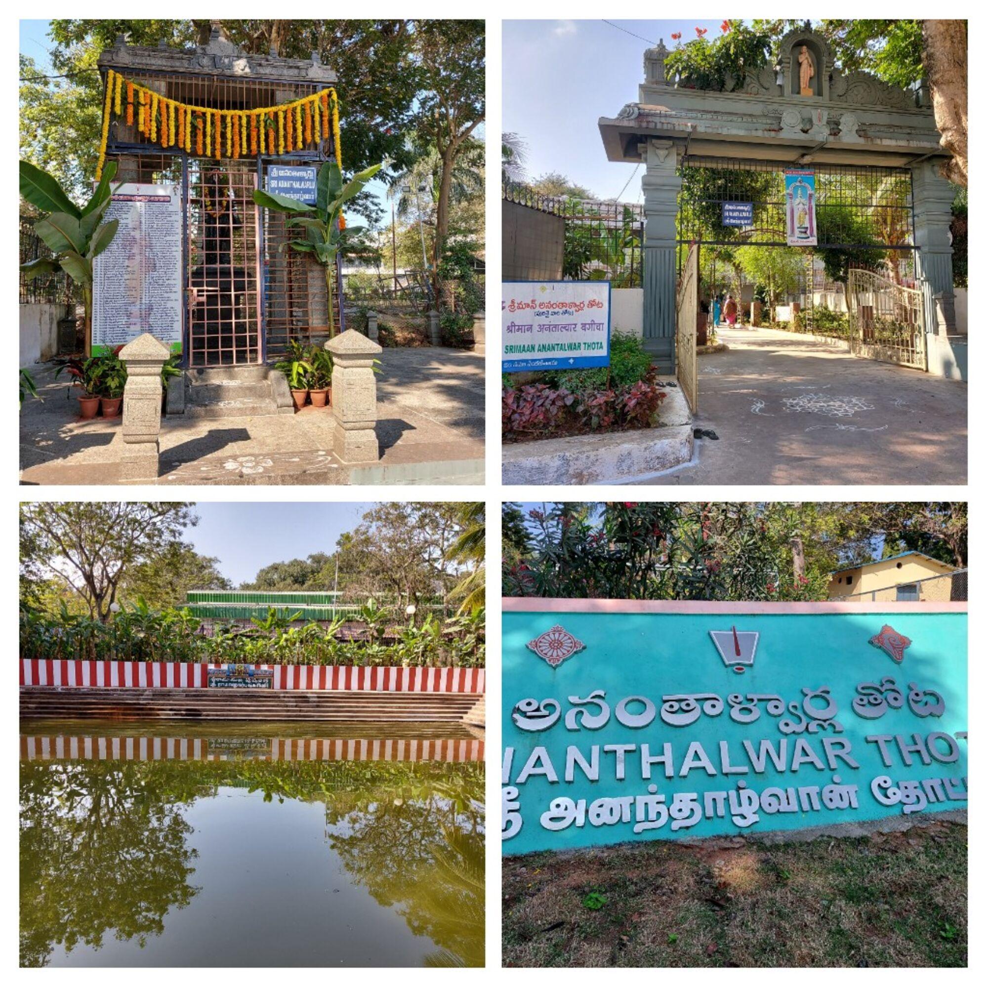 Sri Ananthalwar Thota (Garden) - ஸ்ரீ அனந்தாழ்வார் தோட்டம்