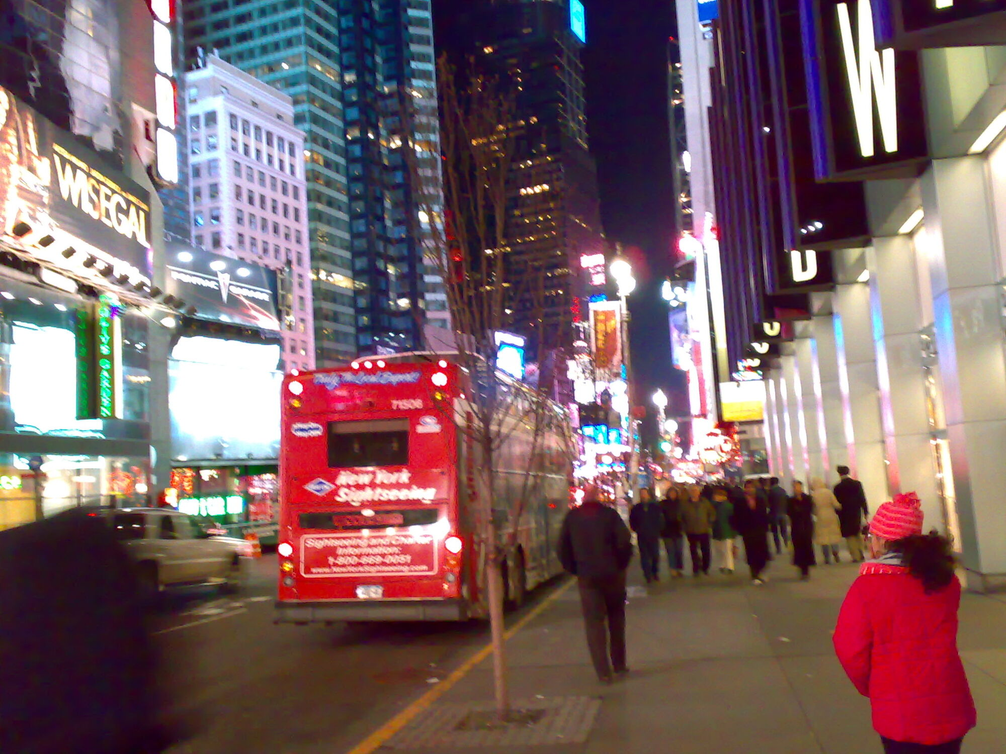 New York Sightseeing buses